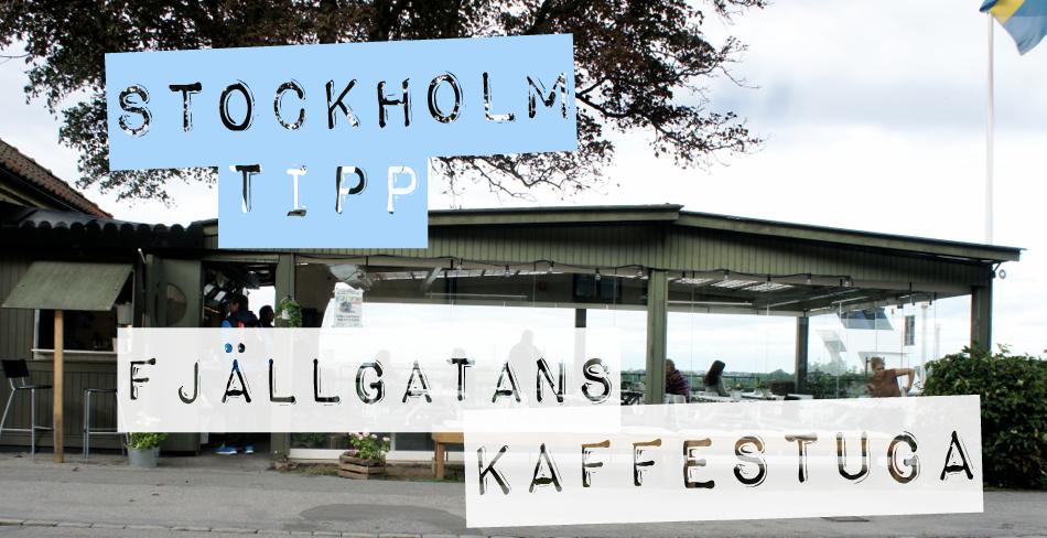 Stockholm Fjällgatans Kaffestuga Södermalm Kaffee Kanelbullar Cappuccino